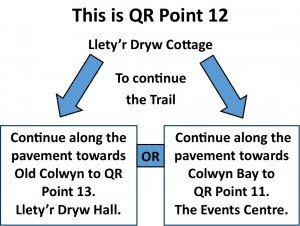 QR Point 12 Lletyr Dryw Cottage